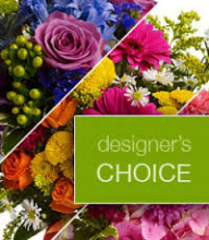 Designer Choice- Small
