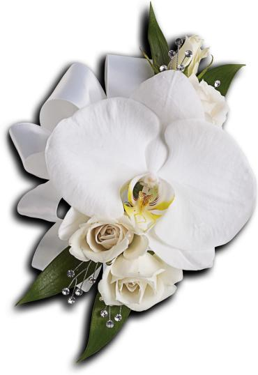 White Orchid and Rose Pin On Corsage