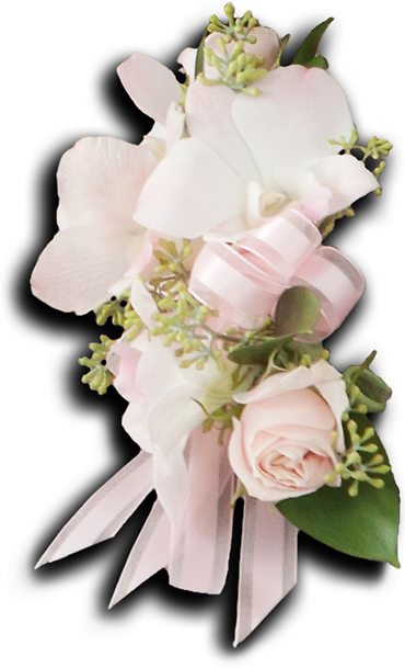 Beautiful Blush Pin On Corsage